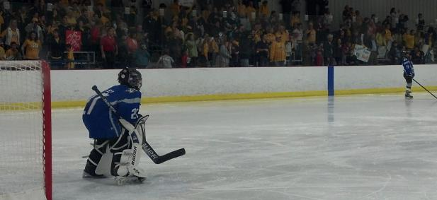 Preds Fans Flash Mob A Youth Hockey Game To Give Kids An Unforgettable Experience Section303 Com